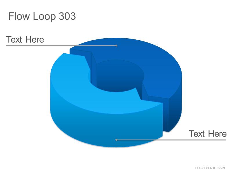 Flow Loop 303