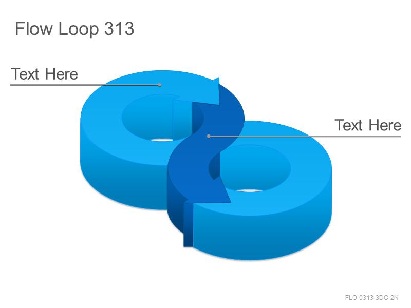 Flow Loop 313