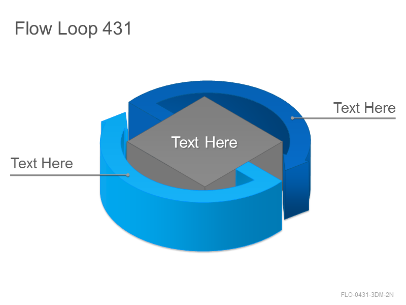 Flow Loop 431