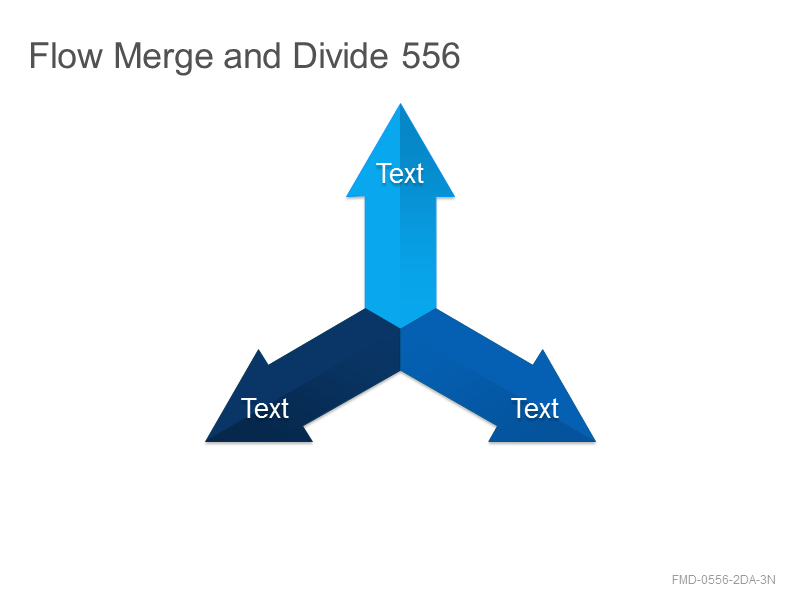 Flow Merge and Divide 556