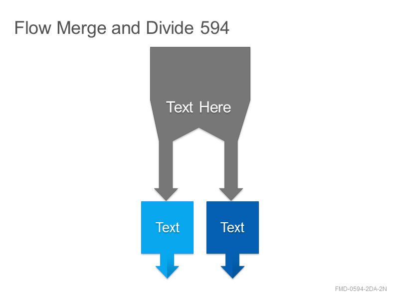 Flow Merge and Divide 594