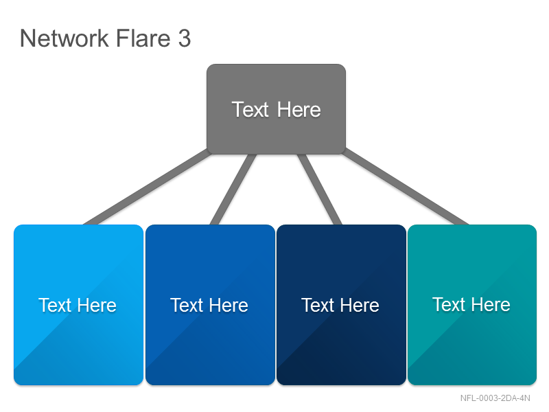 Network Flare 3