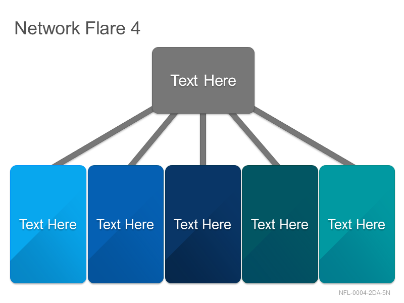Network Flare 4
