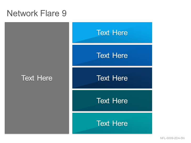 Network Flare 9