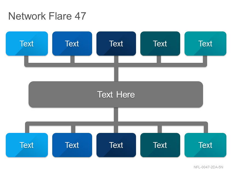 Network Flare 47
