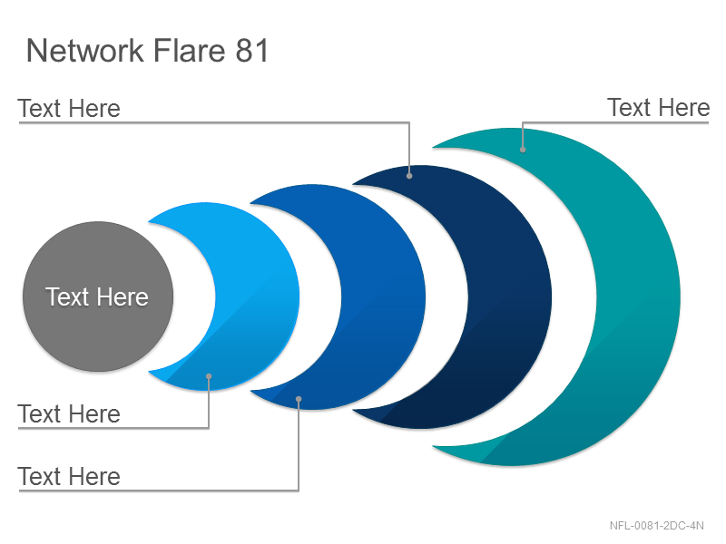 Network Flare 81