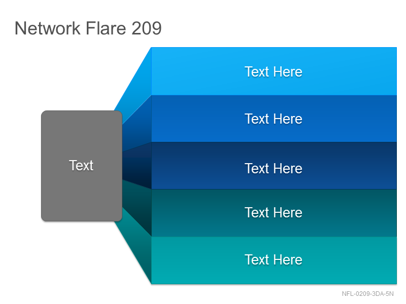 Network Flare 209
