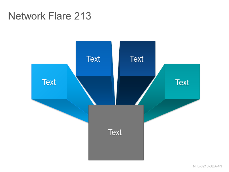 Network Flare 213