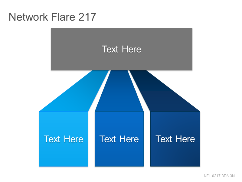 Network Flare 217