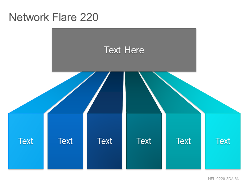 Network Flare 220
