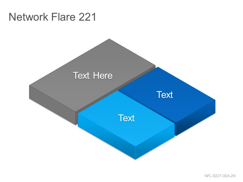 Network Flare 221