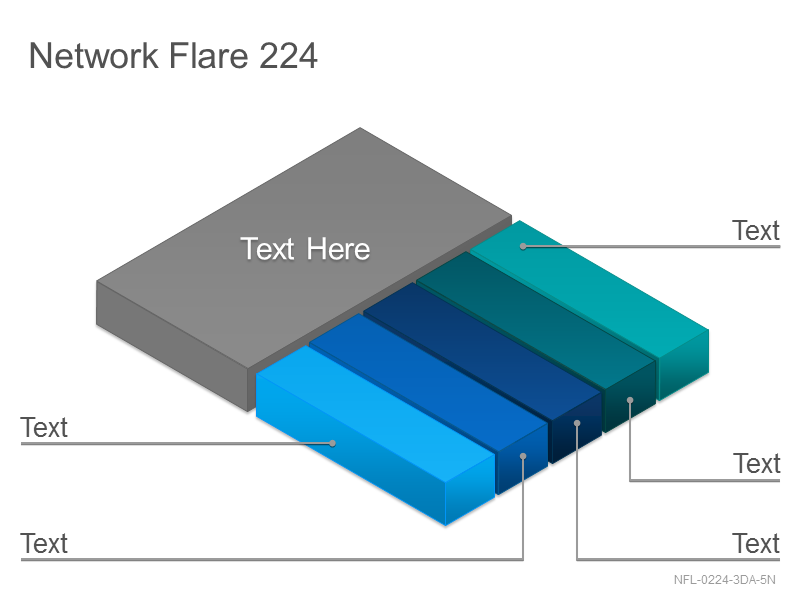Network Flare 224