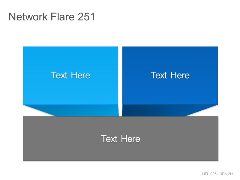 Network Flare 251