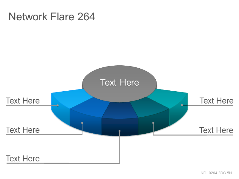 Network Flare 264