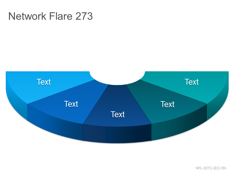 Network Flare 273