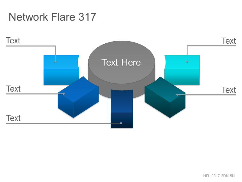 Network Flare 317