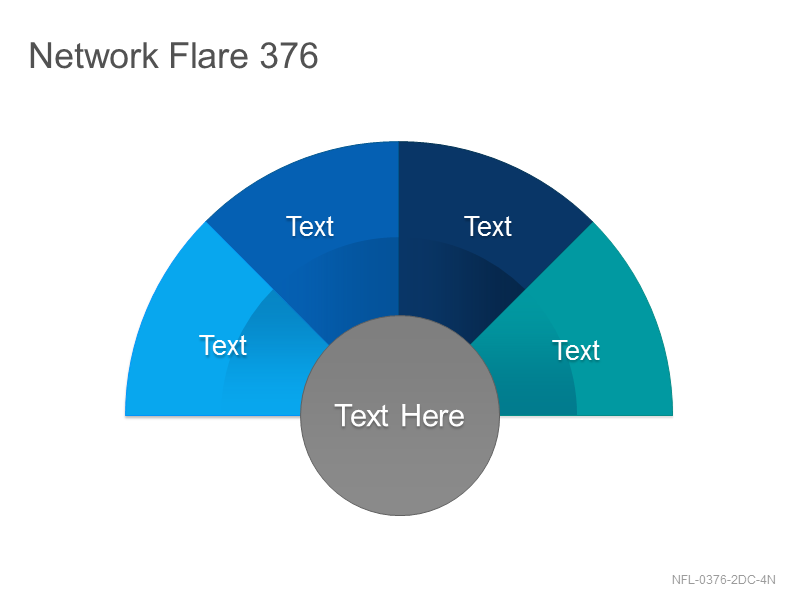 Network Flare 376