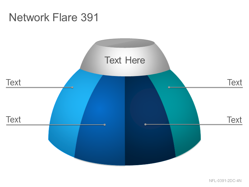 Network Flare 391