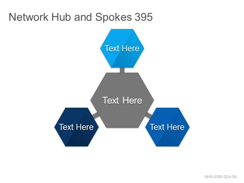Network Hub & Spokes 395