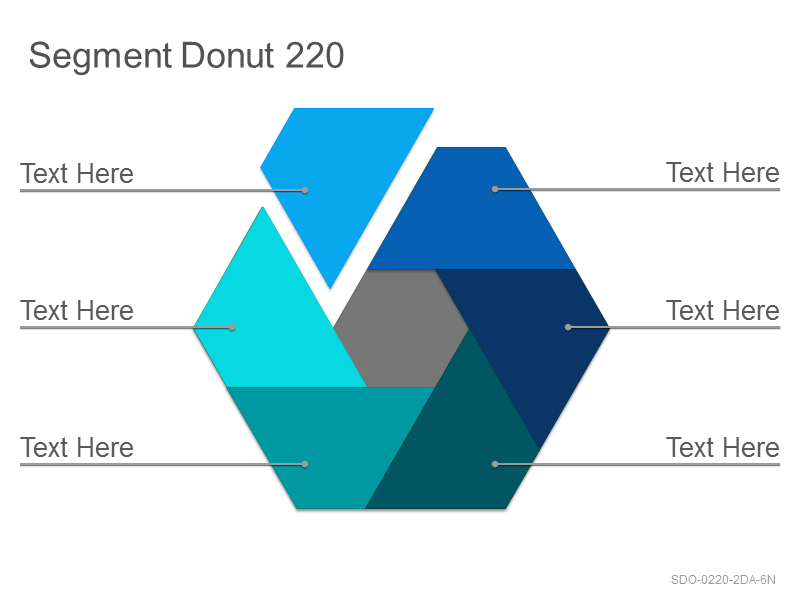 Segment Donut 220