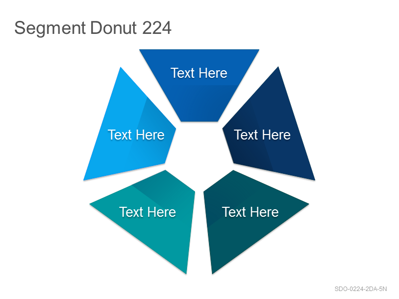 Segment Donut 224