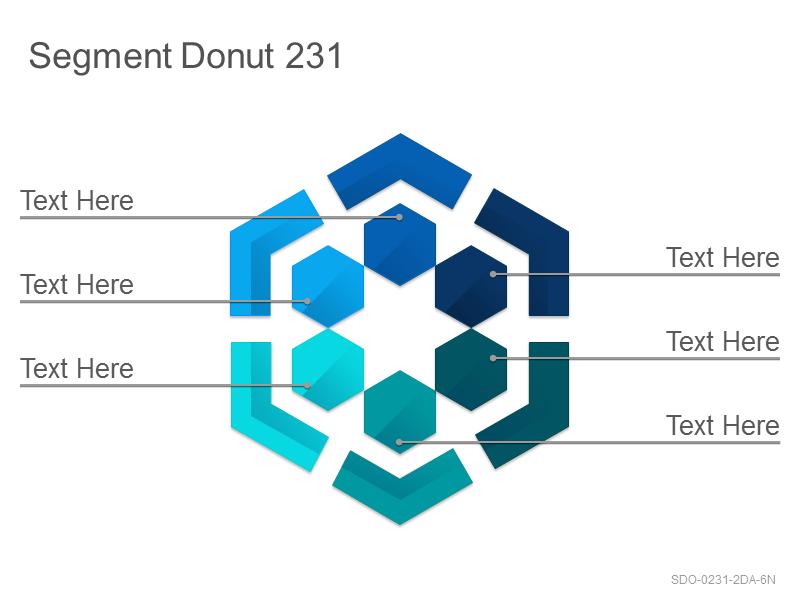Segment Donut 231