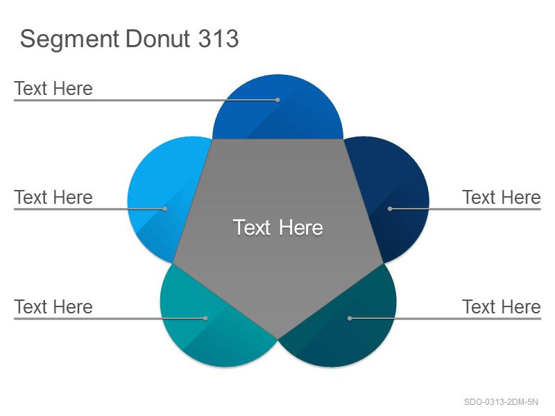 Segment Donut 313
