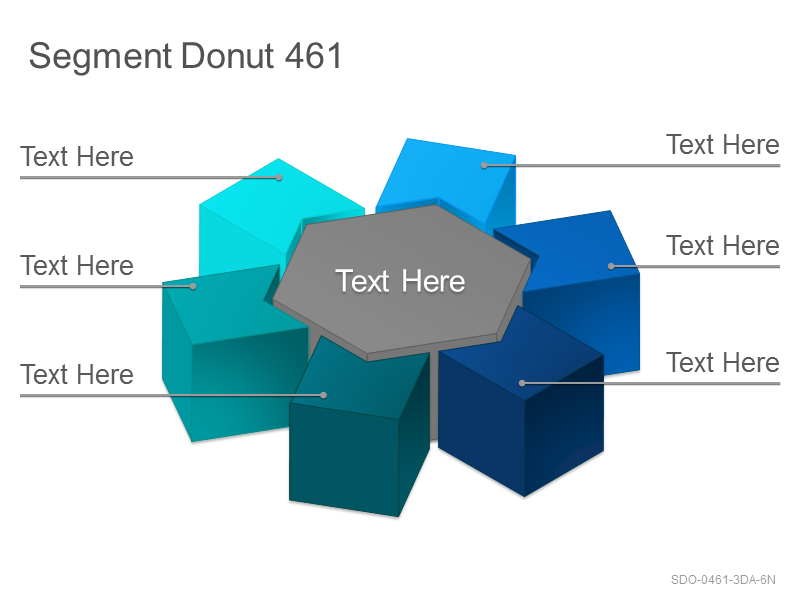 Segment Donut 461
