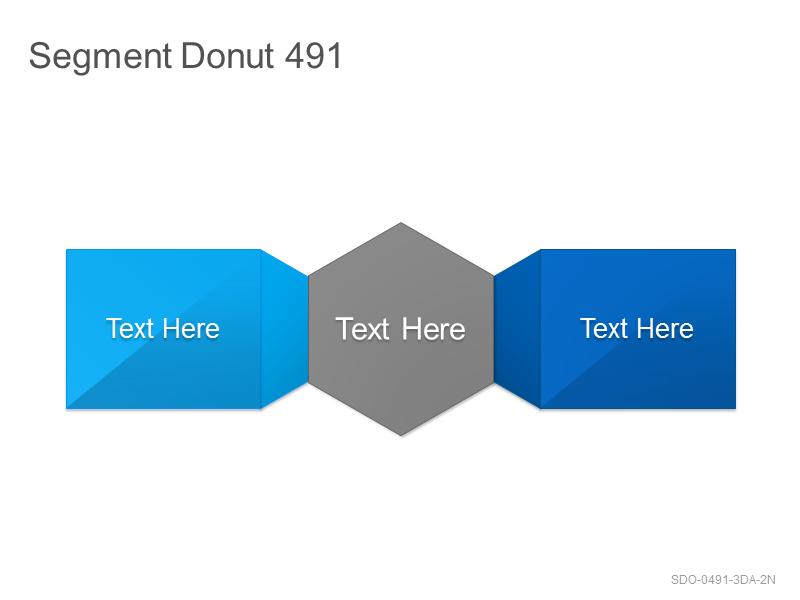 Segment Donut 491