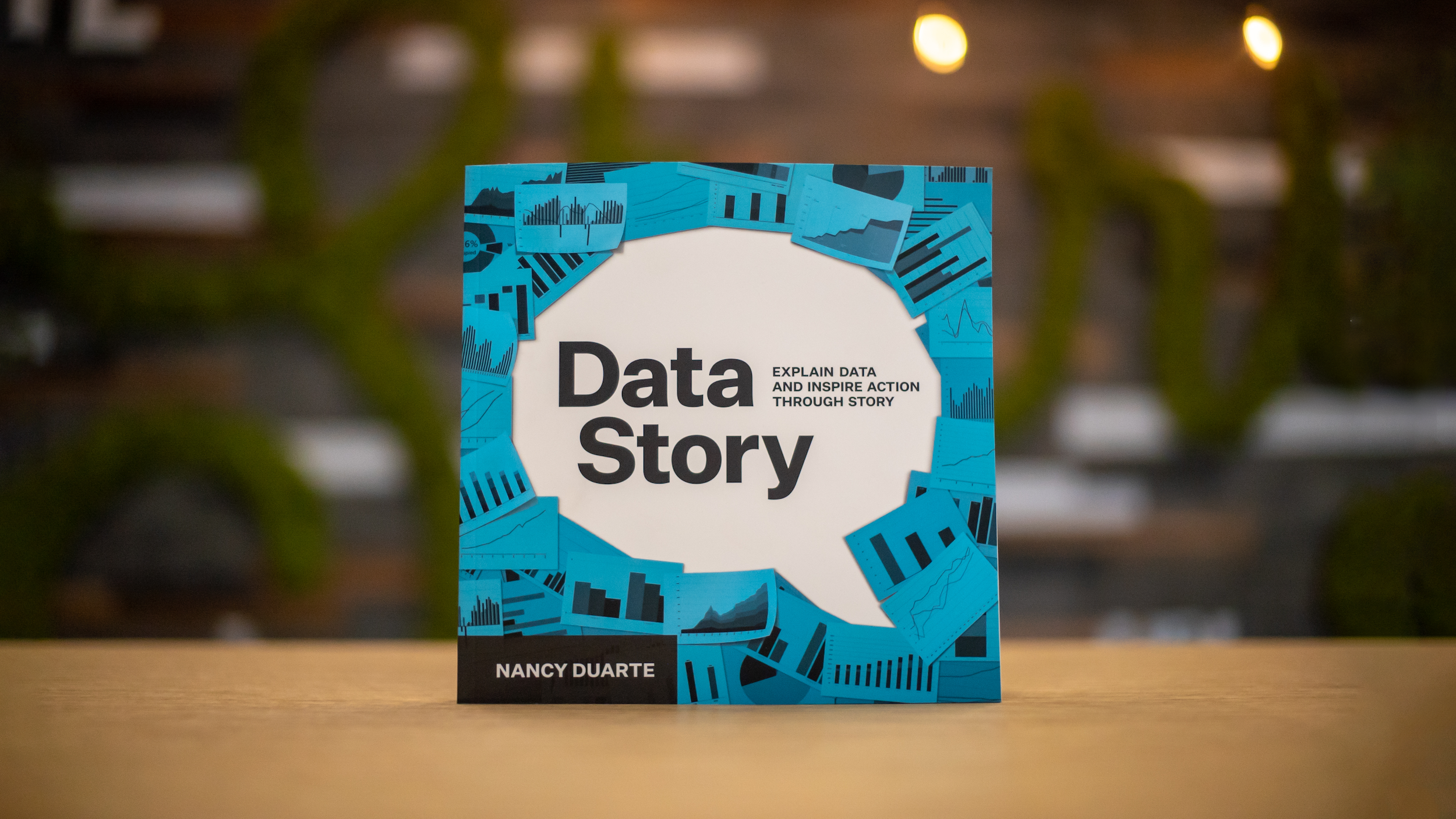 DataStory_Book_IP-1