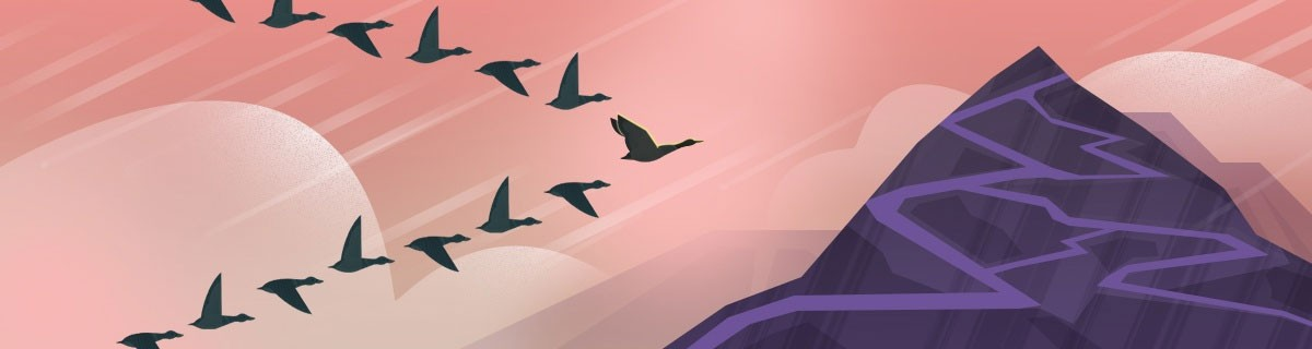 birds flying in formation - pink background
